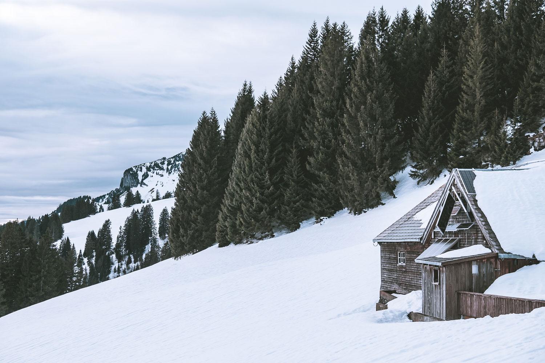 Wer sich wohl in dieser Hütte versteckt?